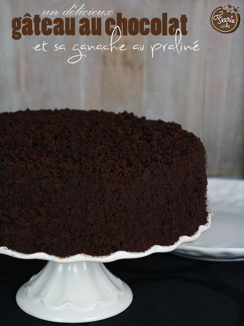Gâteau au chocolat et sa ganache au praliné