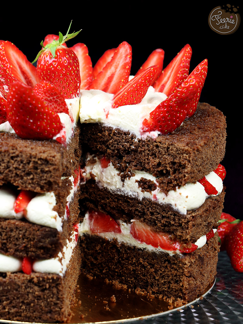 Layer Cake Nature Chocolat