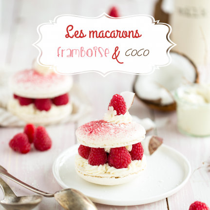 MACARONS SANDWICHES COCO-FBSE-6
