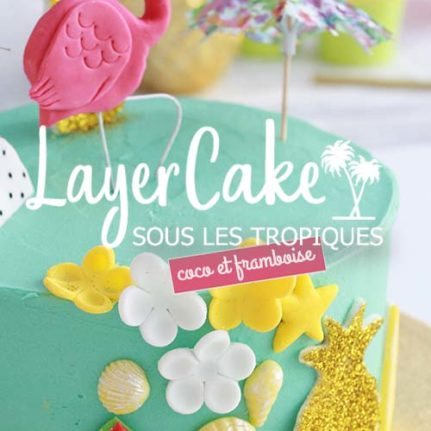 Layer cake coco framboise