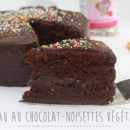Gâteau chocolat-noisettes végétalien