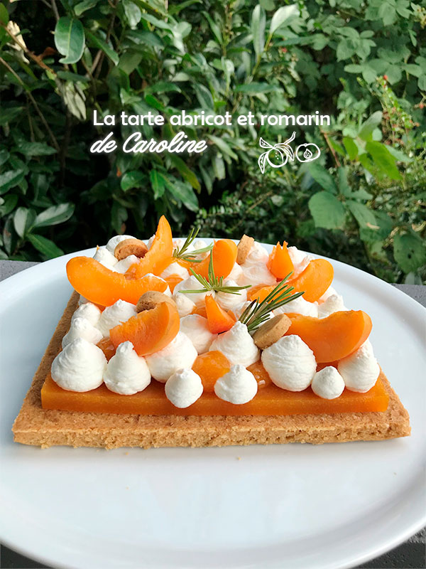 tartes abricot romarin