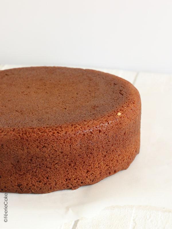 Gâteau nature, Molly Cake, parfaite base pour réaliser des gâteaux en pâte à sucre