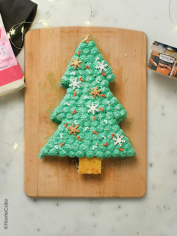 Layer cake sapin de Noël chocolat praliné   Féerie Cake
