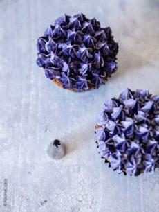 Fleur de lilas violette