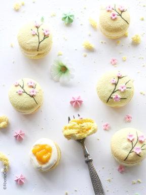 Tout sur les macarons